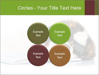 0000077725 PowerPoint Template - Slide 38
