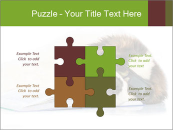 0000077725 PowerPoint Template - Slide 43