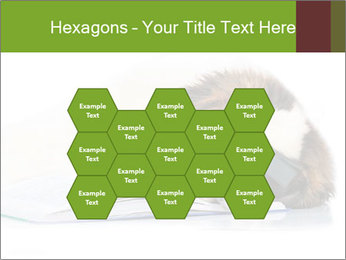 0000077725 PowerPoint Template - Slide 44