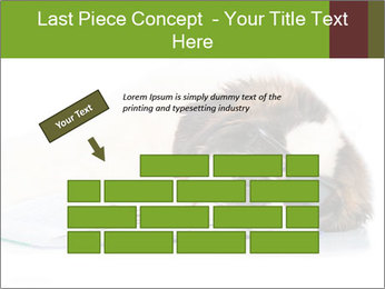 0000077725 PowerPoint Template - Slide 46
