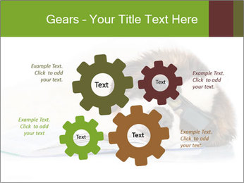 0000077725 PowerPoint Template - Slide 47