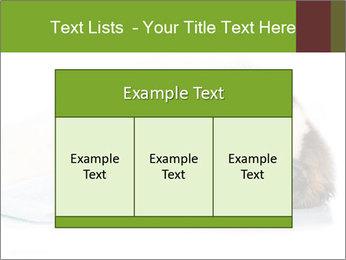 0000077725 PowerPoint Template - Slide 59