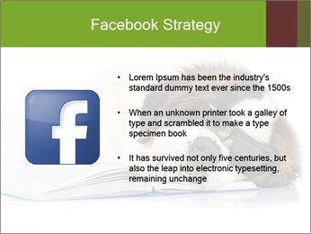 0000077725 PowerPoint Template - Slide 6