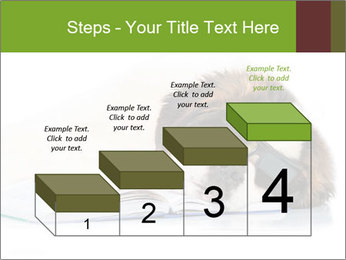 0000077725 PowerPoint Template - Slide 64