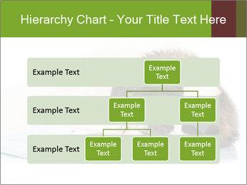 0000077725 PowerPoint Template - Slide 67