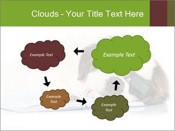 0000077725 PowerPoint Template - Slide 72