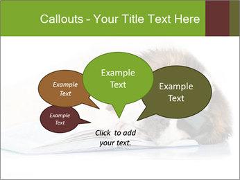 0000077725 PowerPoint Template - Slide 73