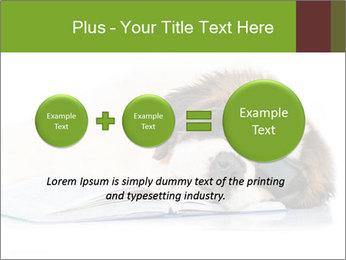 0000077725 PowerPoint Template - Slide 75