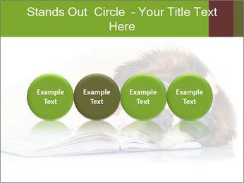 0000077725 PowerPoint Template - Slide 76