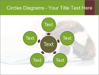 0000077725 PowerPoint Template - Slide 78