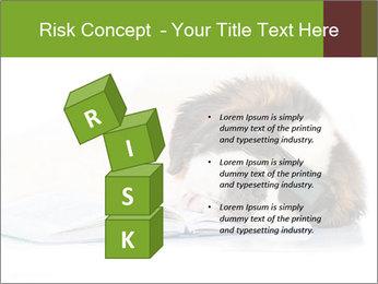 0000077725 PowerPoint Template - Slide 81