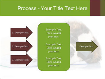 0000077725 PowerPoint Template - Slide 85