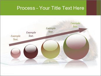 0000077725 PowerPoint Template - Slide 87
