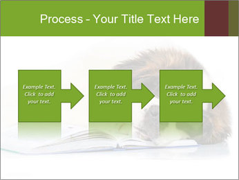 0000077725 PowerPoint Template - Slide 88
