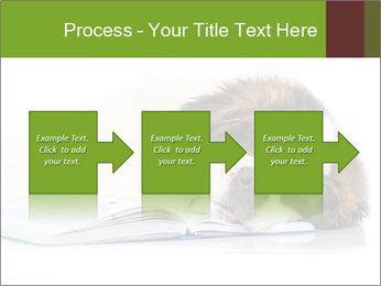 0000077725 PowerPoint Template - Slide 88