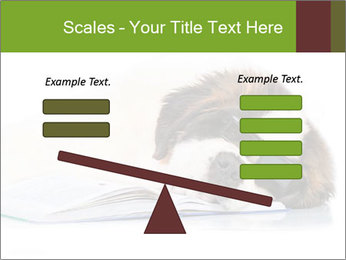 0000077725 PowerPoint Template - Slide 89