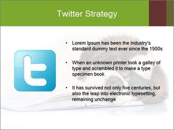 0000077725 PowerPoint Template - Slide 9