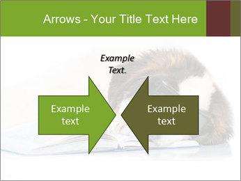 0000077725 PowerPoint Template - Slide 90