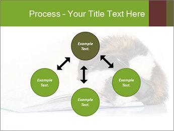 0000077725 PowerPoint Template - Slide 91