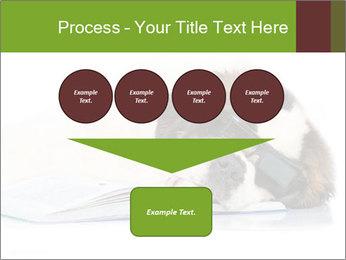 0000077725 PowerPoint Template - Slide 93