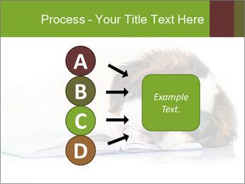 0000077725 PowerPoint Template - Slide 94