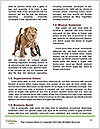 0000077725 Word Template - Page 4