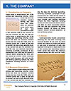 0000077730 Word Template - Page 3