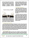 0000077735 Word Template - Page 4