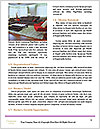 0000077737 Word Template - Page 4