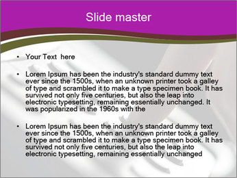 0000077745 PowerPoint Template - Slide 2