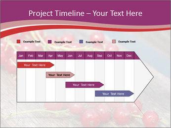 0000077761 PowerPoint Templates - Slide 25