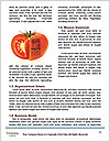 0000077772 Word Templates - Page 4