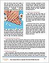 0000077776 Word Template - Page 4
