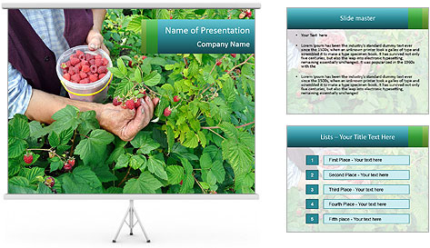 0000077784 PowerPoint Template