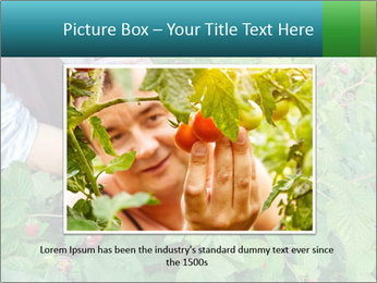 0000077784 PowerPoint Templates - Slide 16