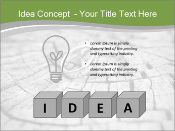 0000077785 PowerPoint Templates - Slide 80