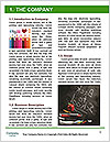 0000077791 Word Template - Page 3