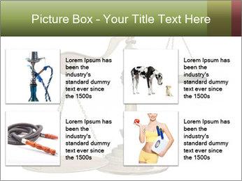 0000077809 PowerPoint Templates - Slide 14