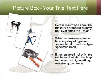 0000077809 PowerPoint Templates - Slide 17