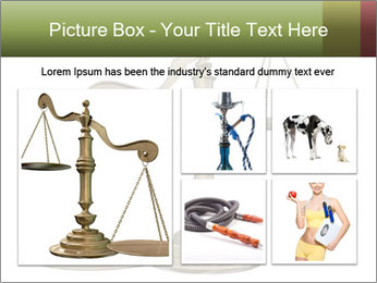 0000077809 PowerPoint Templates - Slide 19