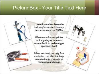 0000077809 PowerPoint Templates - Slide 24
