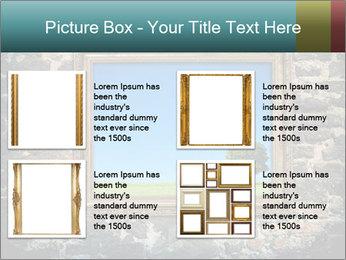 0000077814 PowerPoint Templates - Slide 14