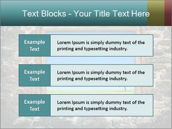 0000077814 PowerPoint Templates - Slide 58