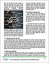 0000077823 Word Template - Page 4