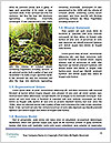 0000077850 Word Template - Page 4