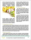0000077860 Word Template - Page 4