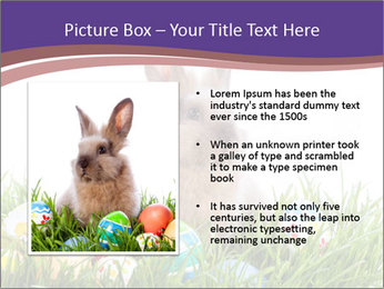 0000077864 PowerPoint Templates - Slide 13