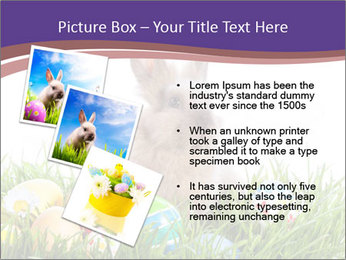 0000077864 PowerPoint Templates - Slide 17