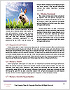 0000077864 Word Templates - Page 4