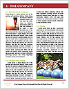 0000077873 Word Templates - Page 3